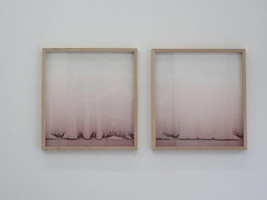 Red wine and blotting paper \r<br>39,5 x 42,5 cm \r\nUnique pieces \r\n\r\nPhoto: Gilla Loercher, courtesy the artist