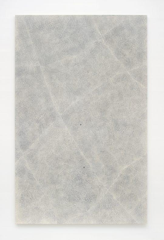 Oil on canvas \r<br>190 x 120 cm\r\n\r\nPhoto: the artist
