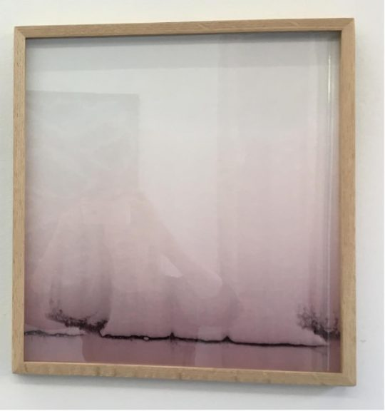 Red wine and blotting paper, Unikat. \r<br>39,5 x 42,5 cm\r\n\r\nPhoto: Gilla Loercher