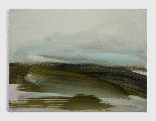 Oil on canvas \r<br>30 x 40 cm\r\n\r\nPhoto: Simone Strasser