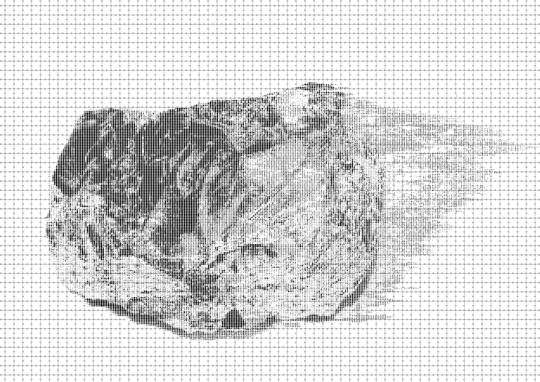 Graphite on Paper <br>60 x 80 cm \n\nPhoto: Cordia Schlegelmilch