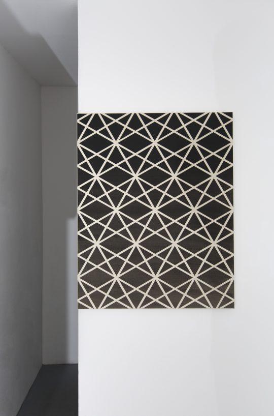Paintings by Ab van Hanegem\r<br>\r\nPhoto: Pablo Ocqueteau, courtesy Galerie Gilla Loercher