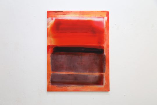 Oil on sublimationprint \r<br>90 x 70 cm\r\n\r\nPhoto: Cordia Schlegelmilch, courtesy Galerie Gilla Loercher