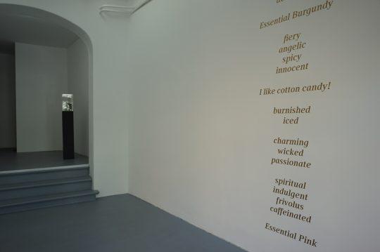 Photo: Iris Musolf, courtesy Galerie Gilla Loercher